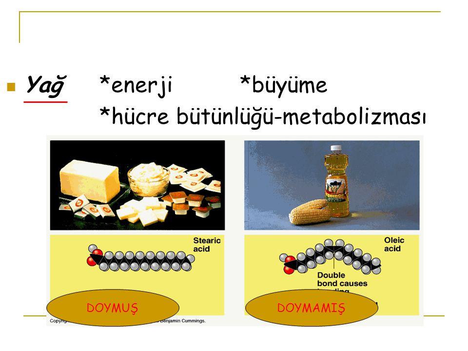 *hücre bütünlüğü-metabolizması