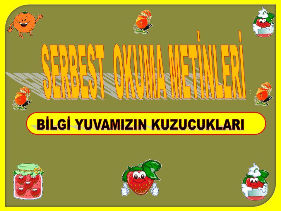 SERBEST OKUMA METİNLERİ