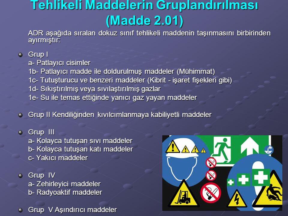 Tehlikeli Maddelerin Gruplandırılması (Madde 2.01)
