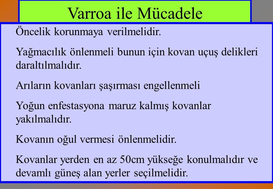 Varroa ile Mücadele Öncelik korunmaya verilmelidir.
