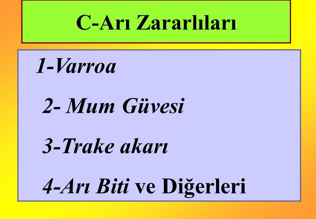 1-Varroa 2- Mum Güvesi 3-Trake akarı 4-Arı Biti ve Diğerleri