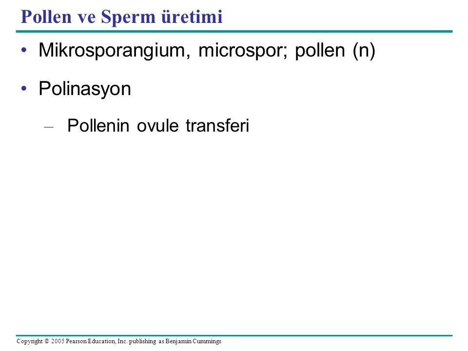Pollen ve Sperm üretimi