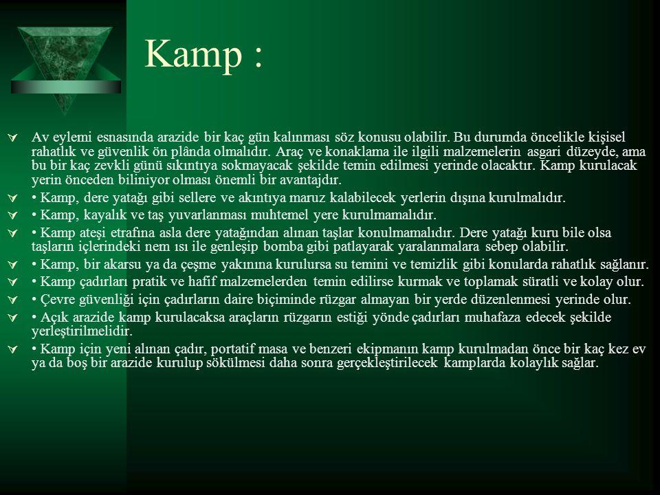 Kamp :