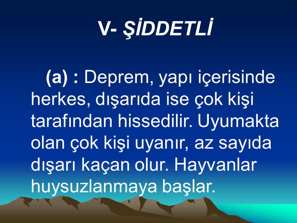 V- ŞİDDETLİ