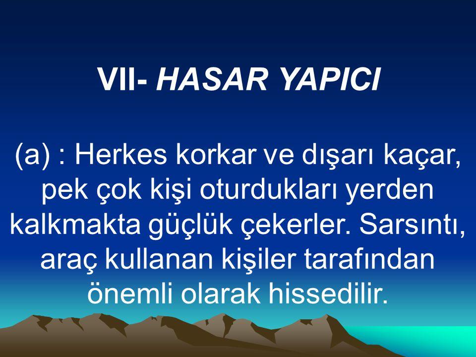VII- HASAR YAPICI