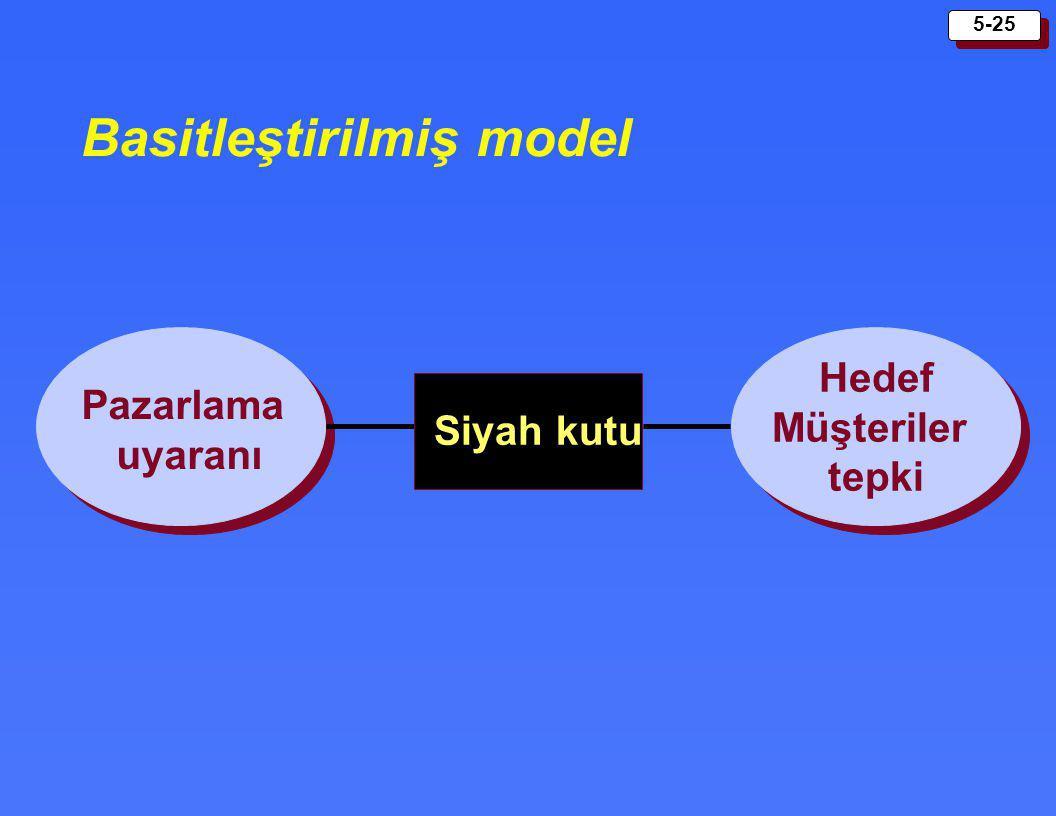 Basitleştirilmiş model