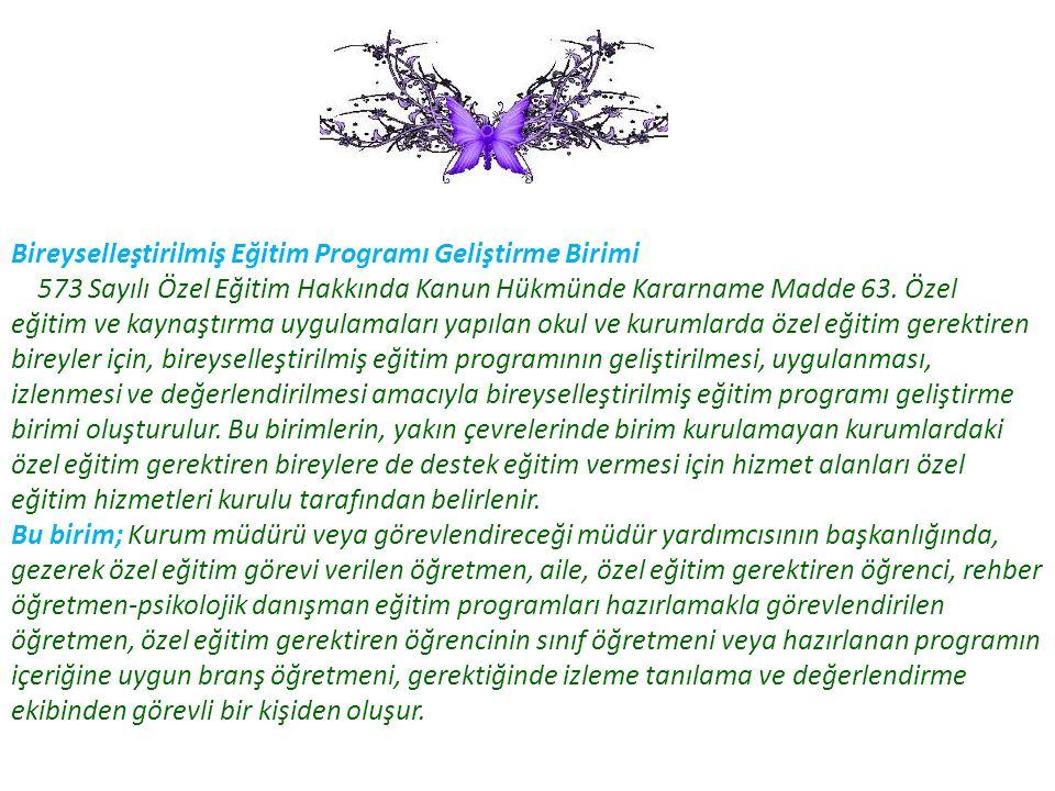 Bireyselleştirilmiş Eğitim Programı Geliştirme Birimi