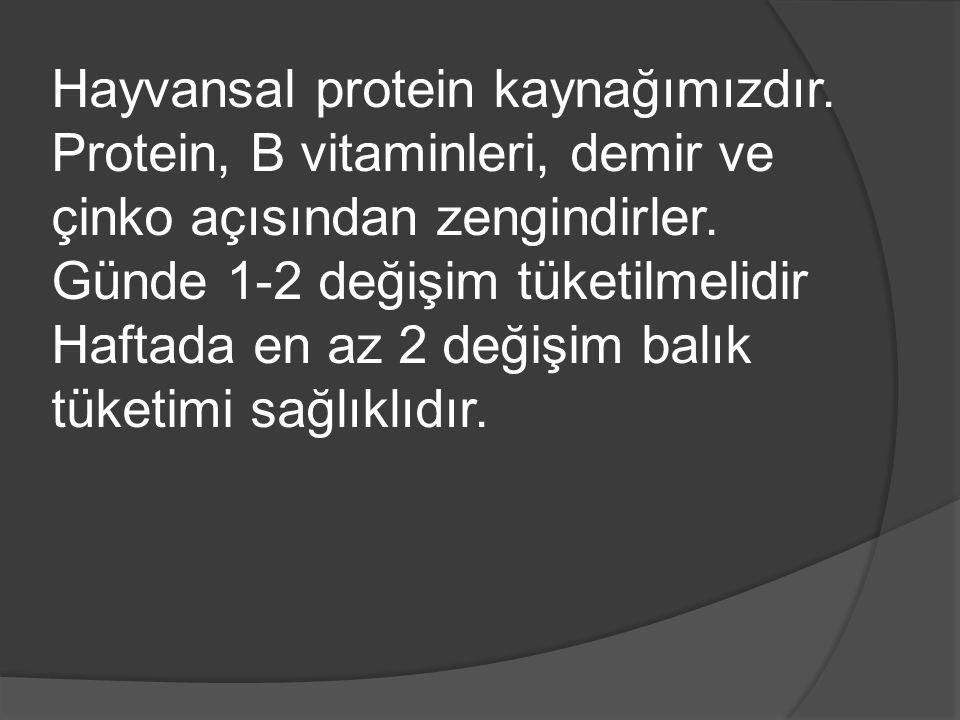 Hayvansal protein kaynağımızdır.