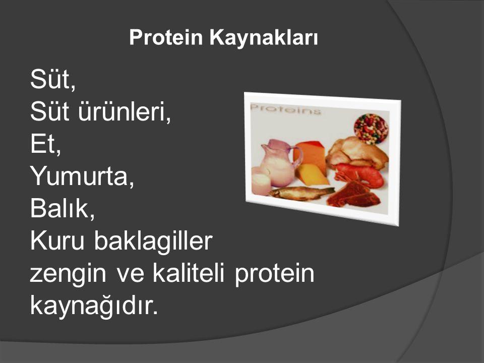 zengin ve kaliteli protein kaynağıdır.