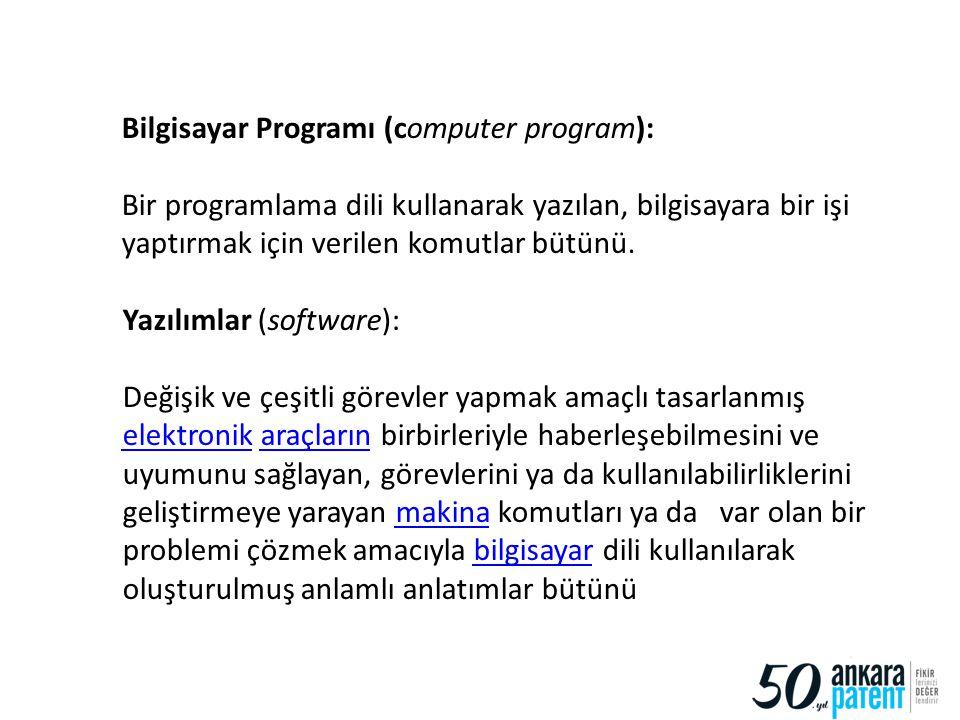 Bilgisayar Programı (computer program):