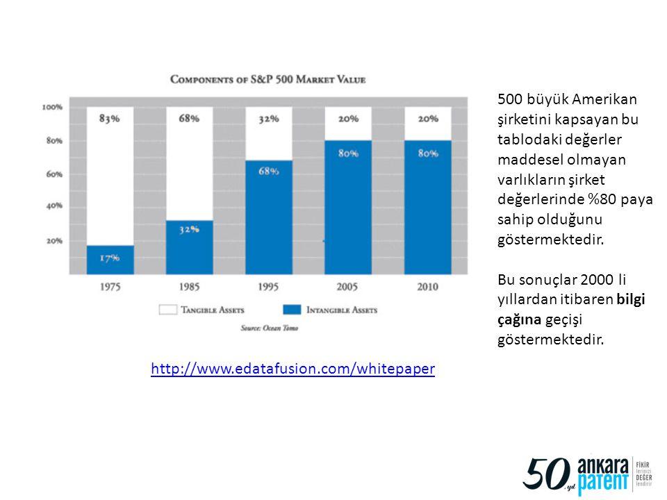 500 büyük Amerikan şirketini kapsayan bu tablodaki değerler maddesel olmayan varlıkların şirket değerlerinde %80 paya sahip olduğunu göstermektedir.