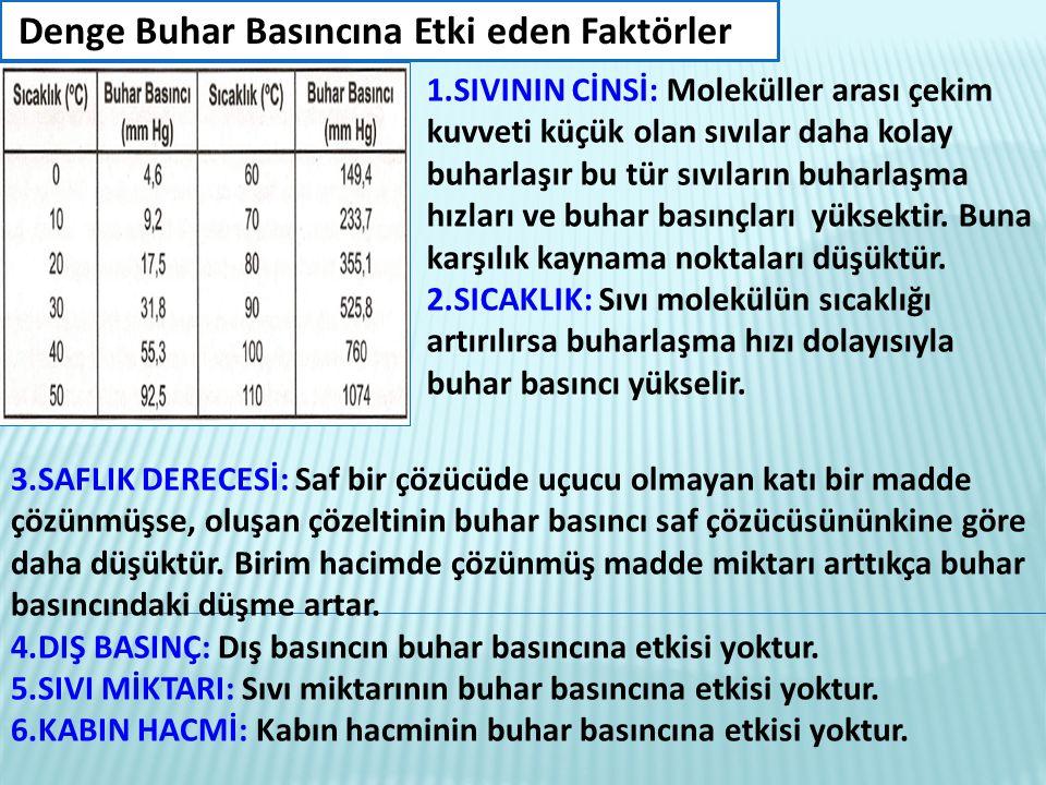 4.DIŞ BASINÇ: Dış basıncın buhar basıncına etkisi yoktur.