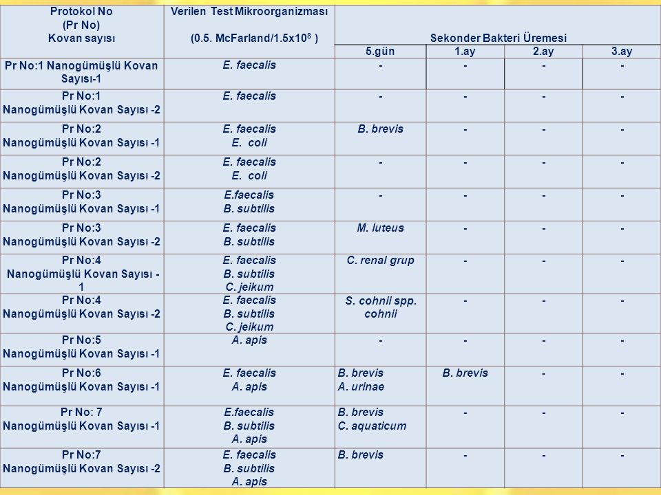 Verilen Test Mikroorganizması (0.5. McFarland/1.5x108 )