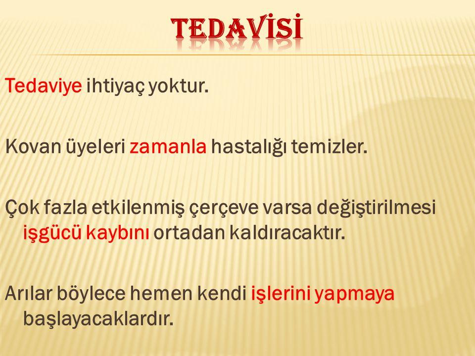 TEDAVİSİ