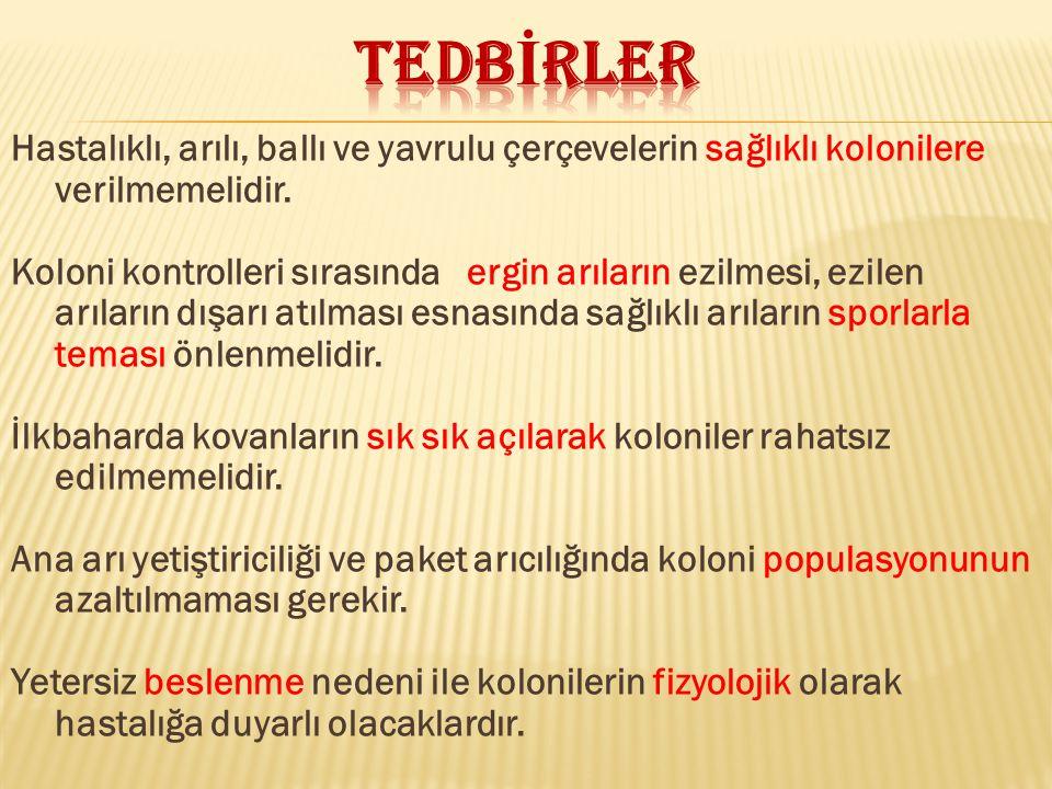 TEDBİRLER