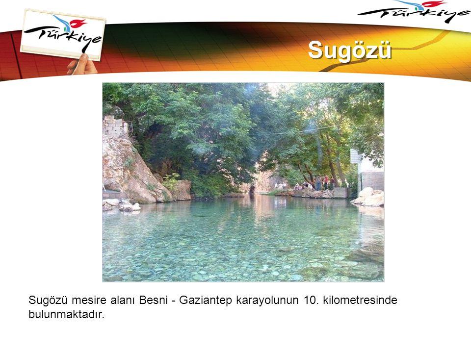 www.themegallery.com Sugözü. Sugözü mesire alanı Besni - Gaziantep karayolunun 10.