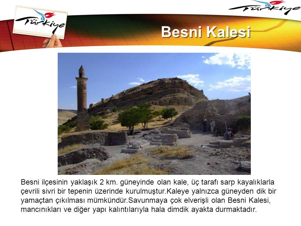 www.themegallery.com Besni Kalesi.