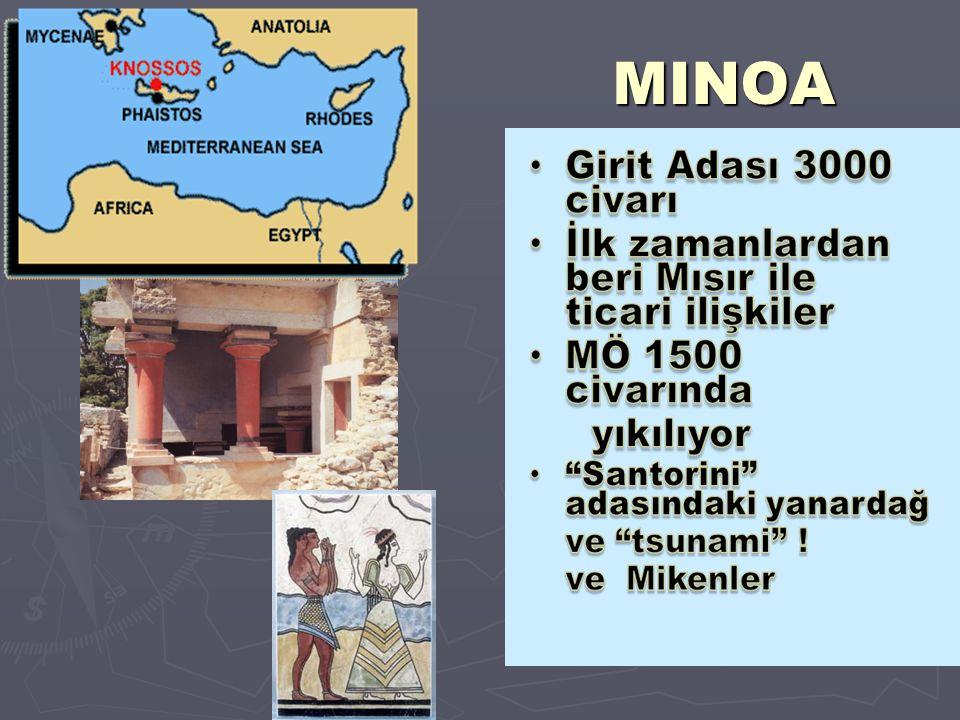MINOA 6