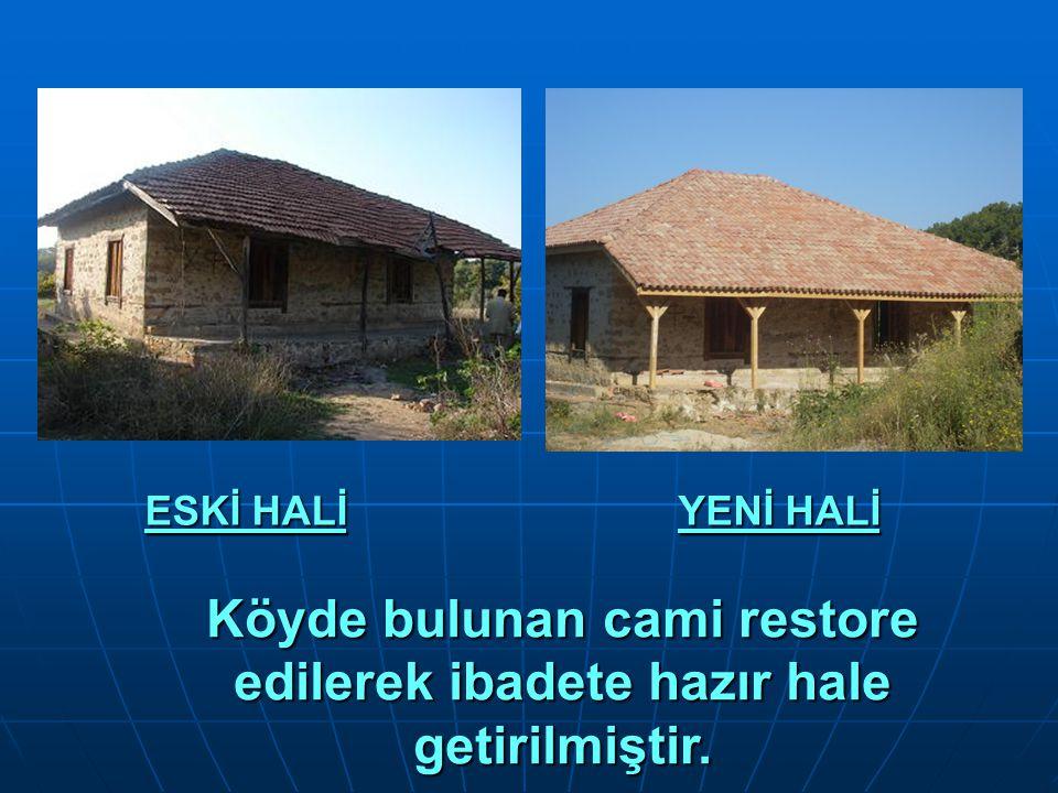 Köyde bulunan cami restore edilerek ibadete hazır hale getirilmiştir.
