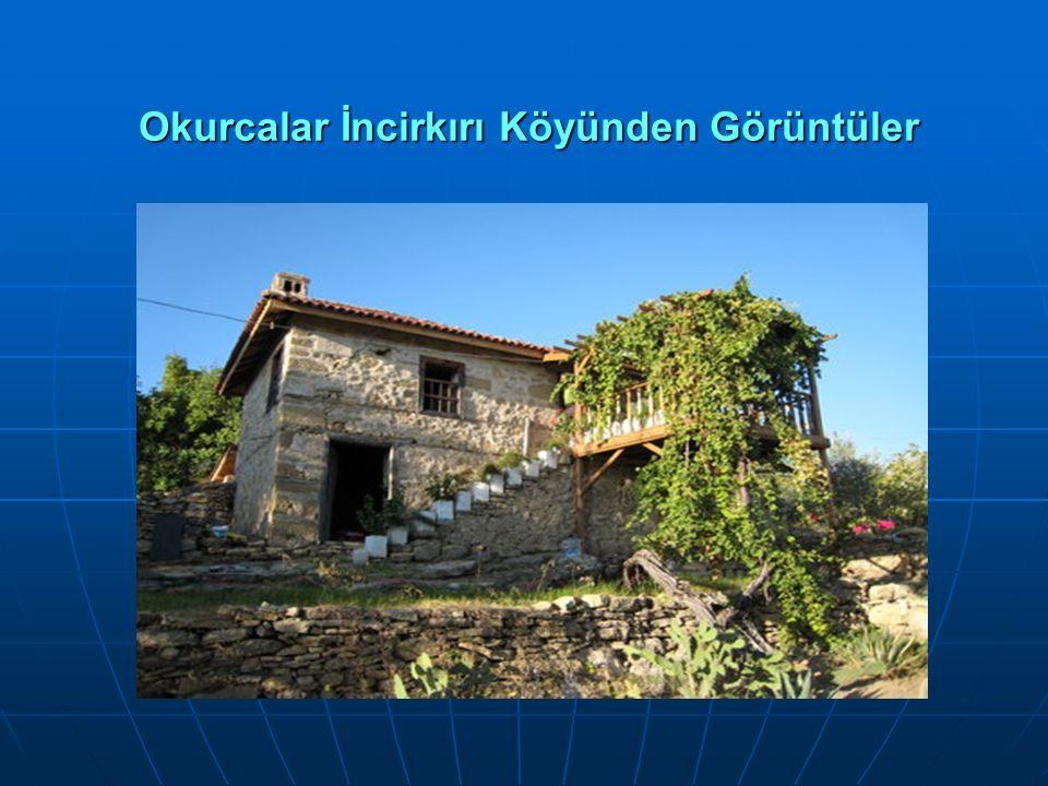 Okurcalar İncirkırı Köyünden Görüntüler