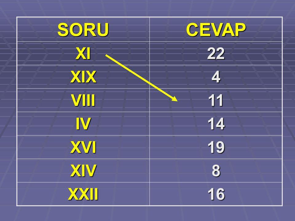 SORU CEVAP XI 22 XIX 4 VIII 11 IV 14 XVI 19 XIV 8 XXII 16
