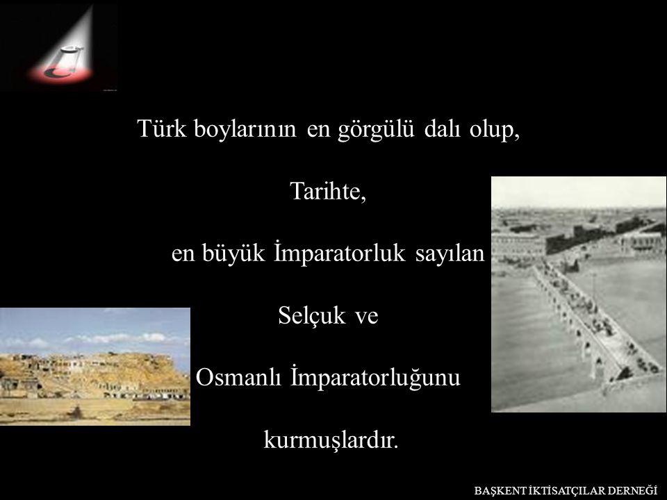 Türk boylarının en görgülü dalı olup, Tarihte,