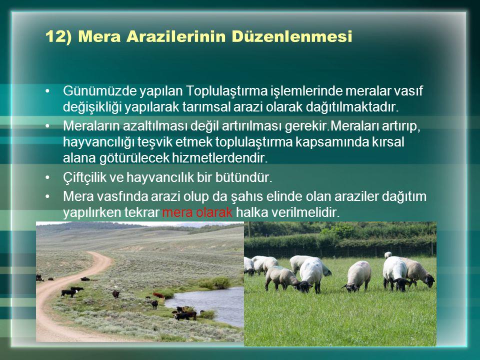 12) Mera Arazilerinin Düzenlenmesi