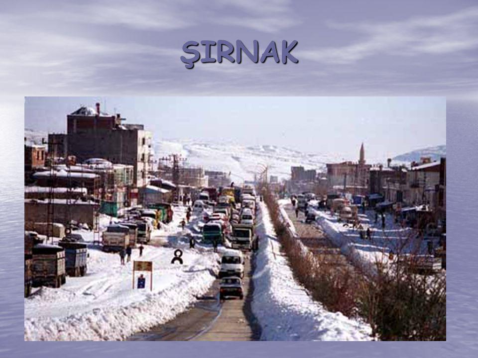 ŞIRNAK