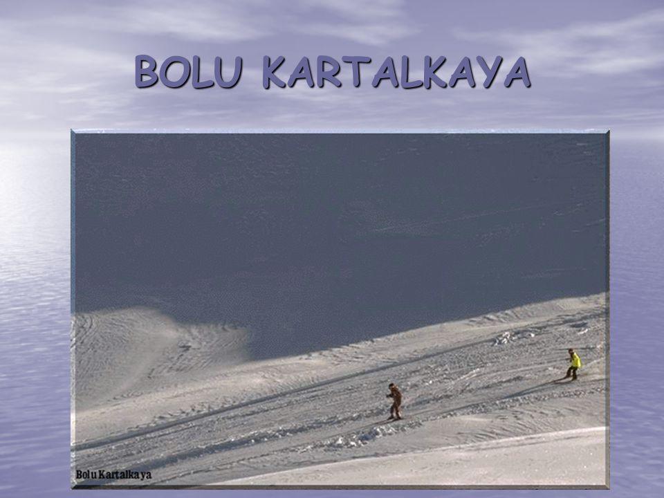 BOLU KARTALKAYA