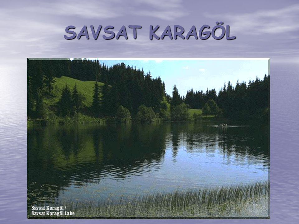 SAVSAT KARAGÖL