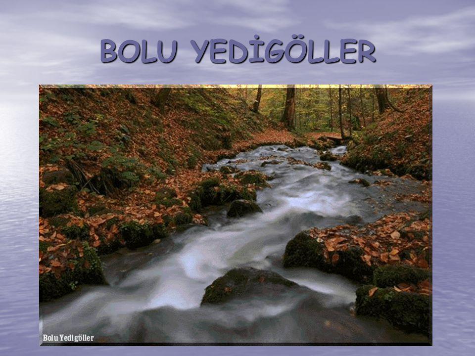 BOLU YEDİGÖLLER