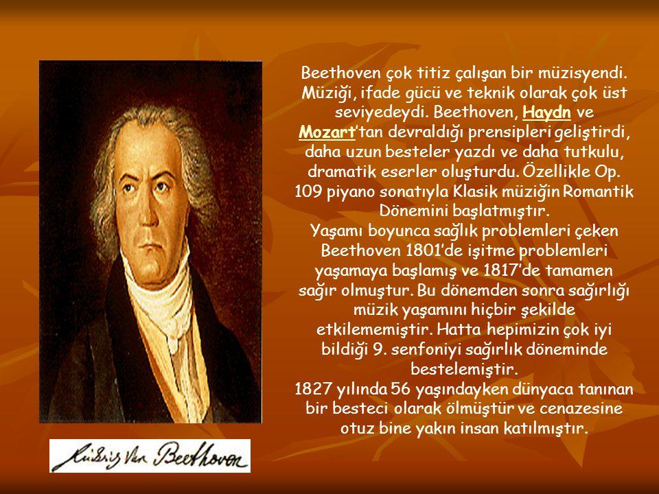 Beethoven çok titiz çalışan bir müzisyendi
