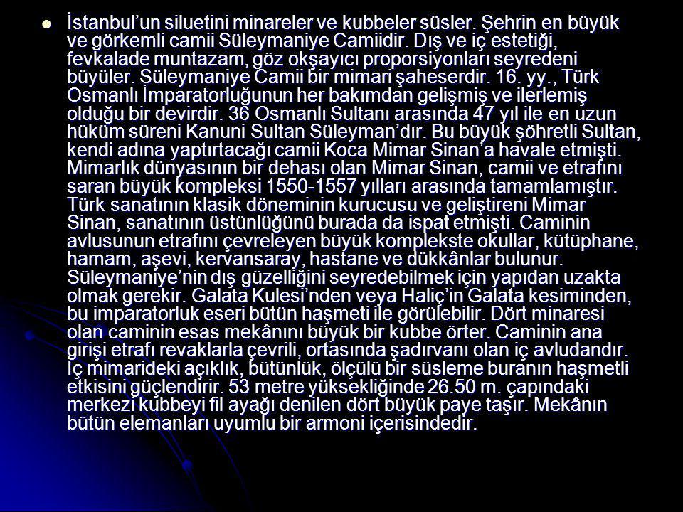 İstanbul'un siluetini minareler ve kubbeler süsler