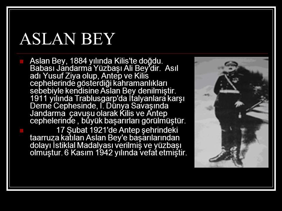 ASLAN BEY
