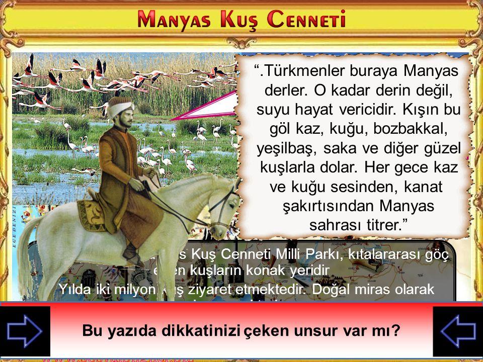 ve kuğu sesinden, kanat şakırtısından Manyas sahrası titrer.