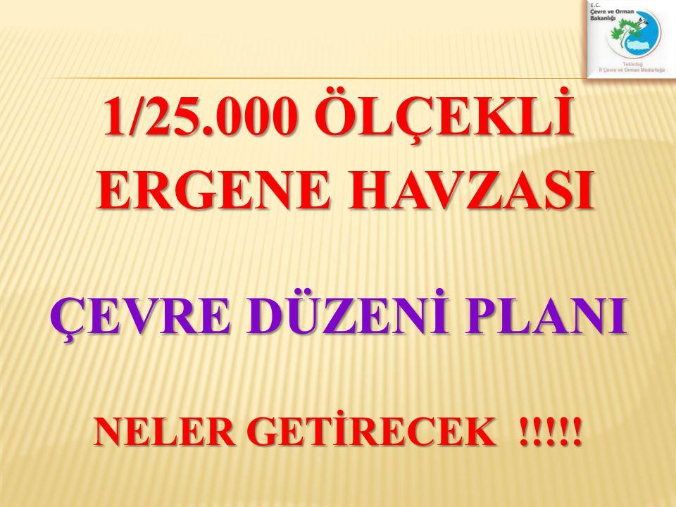 1/25.000 ÖLÇEKLİ ERGENE HAVZASI