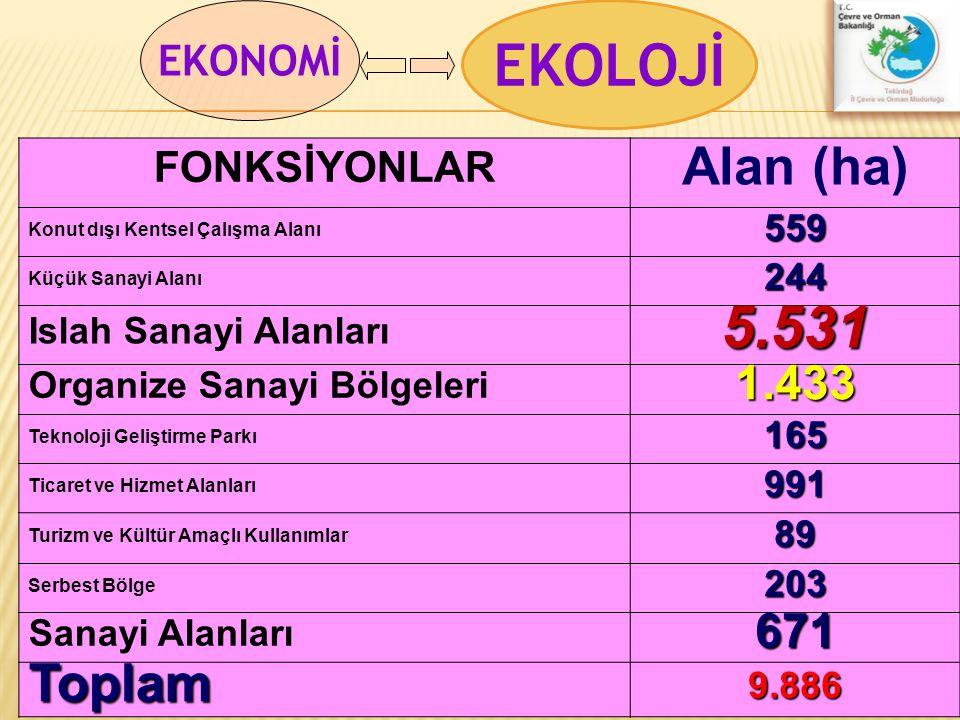 EKOLOJİ 5.531 Alan (ha) Toplam 1.433 671 EKONOMİ FONKSİYONLAR 559 244