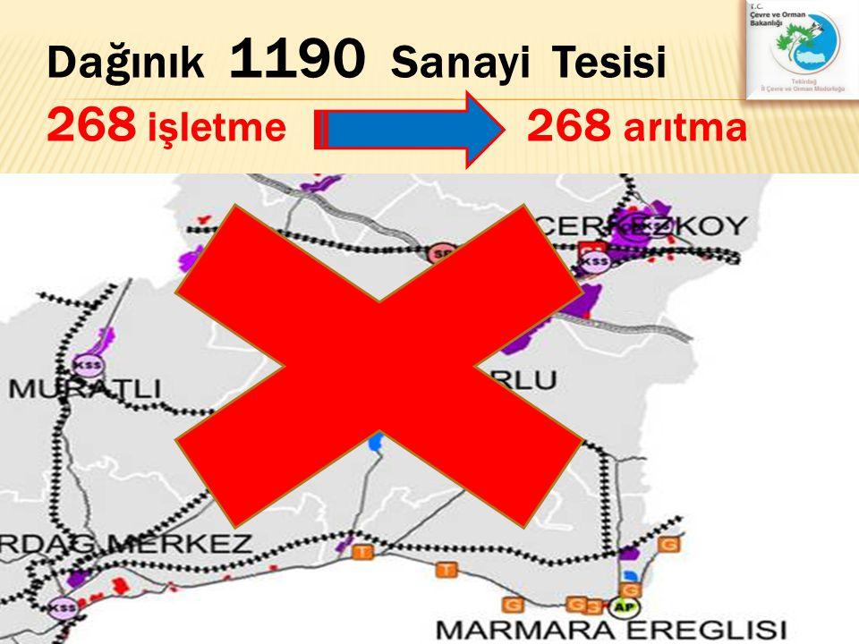 Dağınık 1190 Sanayi Tesisi 268 işletme 268 arıtma