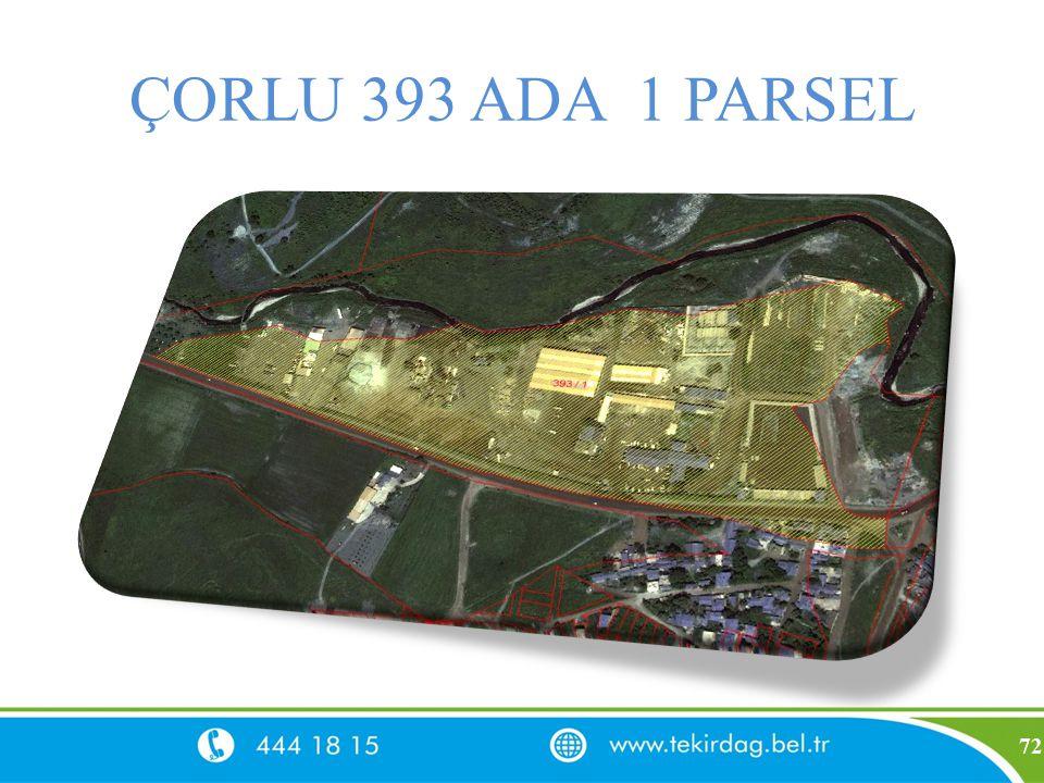 ÇORLU 393 ADA 1 PARSEL