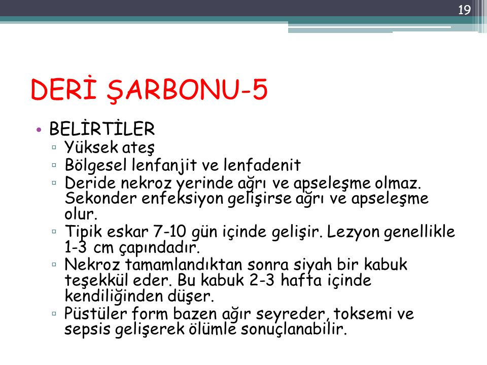 DERİ ŞARBONU-5 BELİRTİLER Yüksek ateş Bölgesel lenfanjit ve lenfadenit