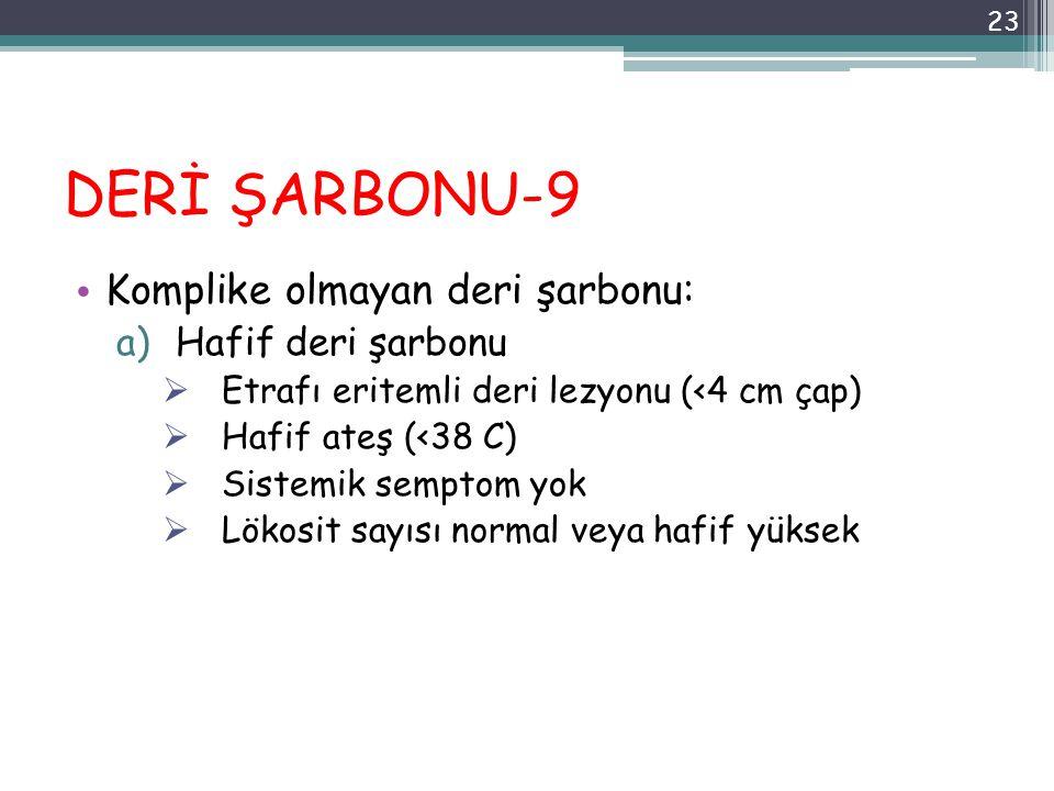 DERİ ŞARBONU-9 Komplike olmayan deri şarbonu: Hafif deri şarbonu