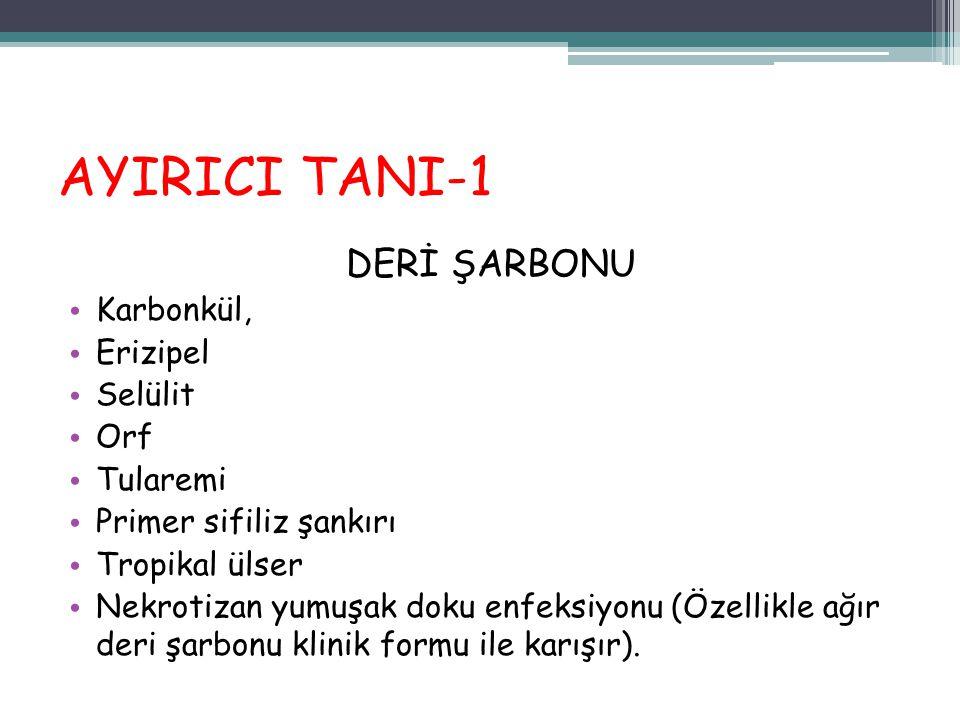 AYIRICI TANI-1 DERİ ŞARBONU Karbonkül, Erizipel Selülit Orf Tularemi