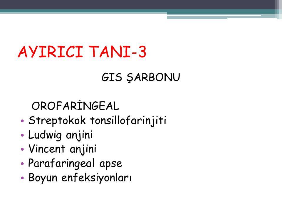 AYIRICI TANI-3 GIS ŞARBONU OROFARİNGEAL Streptokok tonsillofarinjiti