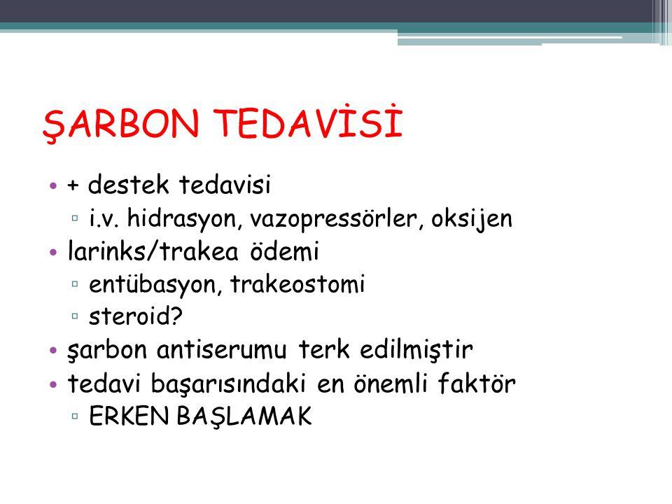 ŞARBON TEDAVİSİ + destek tedavisi larinks/trakea ödemi