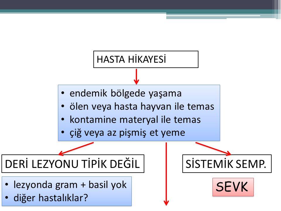 DERİ LEZYONU TİPİK DEĞİL SİSTEMİK SEMP.