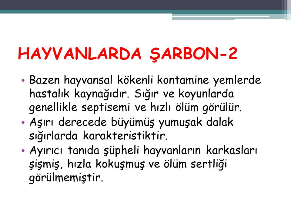 HAYVANLARDA ŞARBON-2