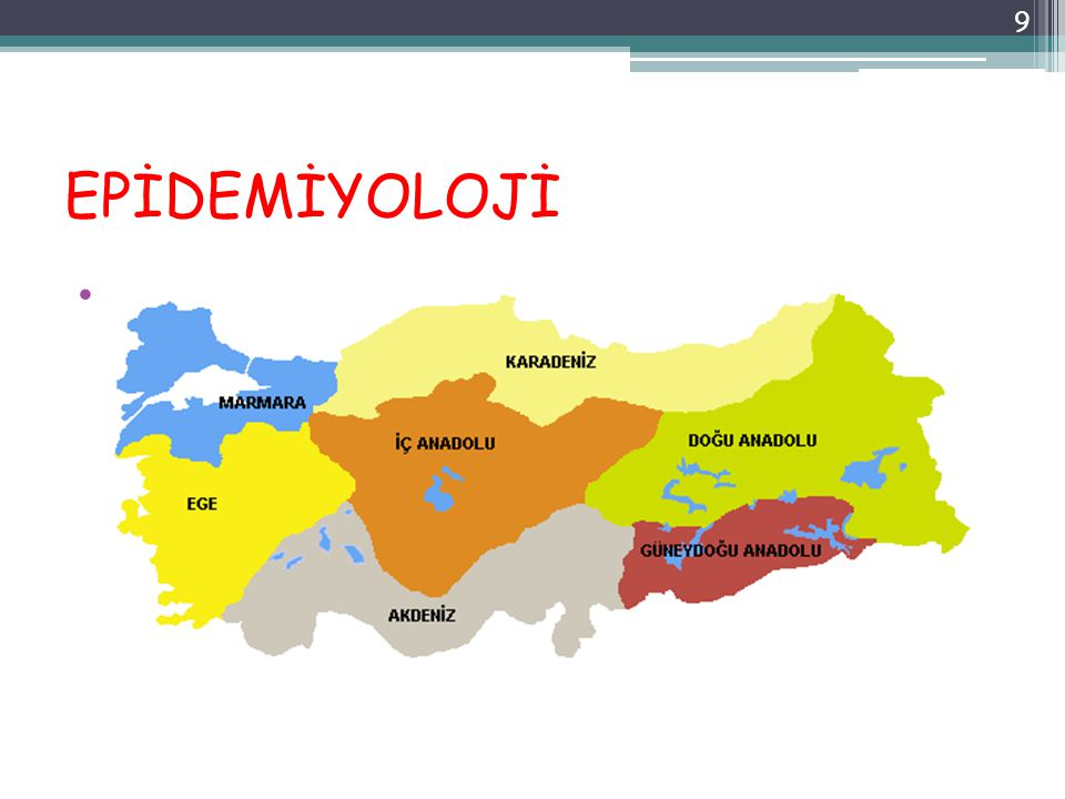 EPİDEMİYOLOJİ Endemik