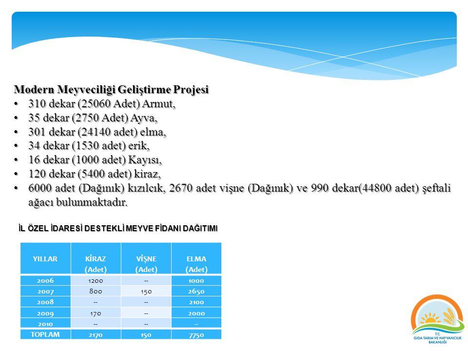 Modern Meyveciliği Geliştirme Projesi 310 dekar (25060 Adet) Armut,