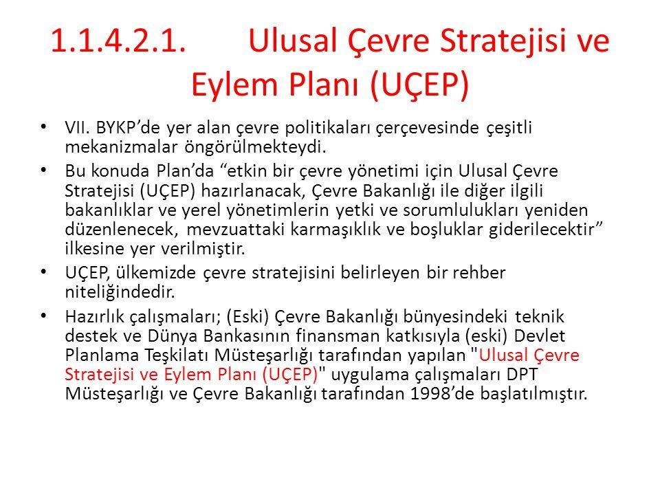 1.1.4.2.1. Ulusal Çevre Stratejisi ve Eylem Planı (UÇEP)