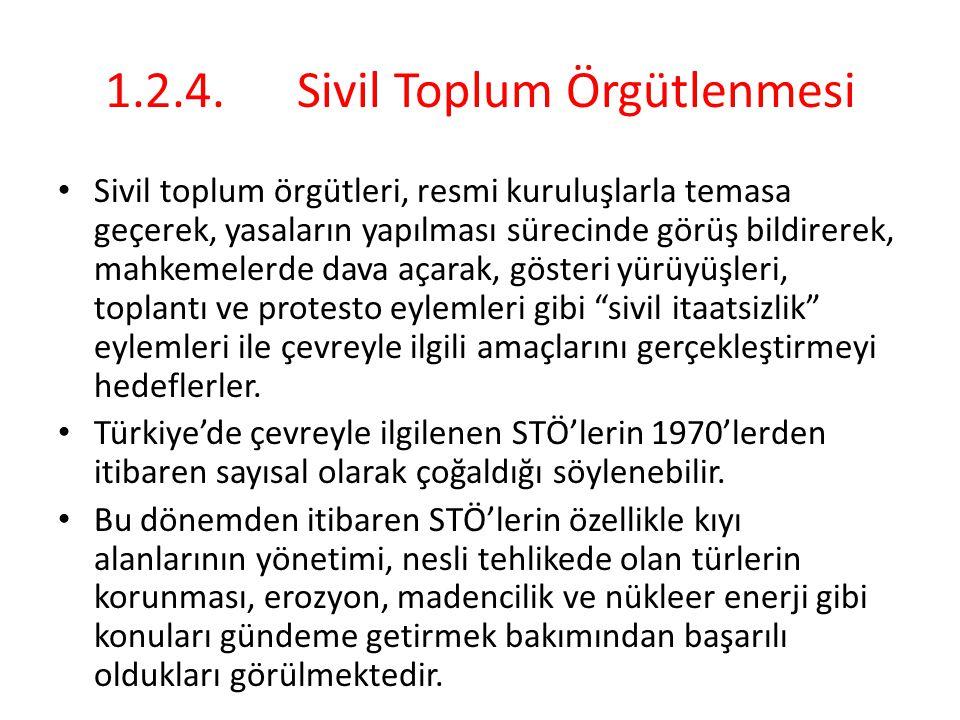 1.2.4. Sivil Toplum Örgütlenmesi